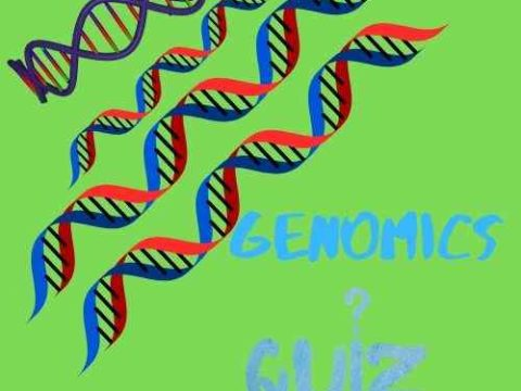Genomics Quiz 1