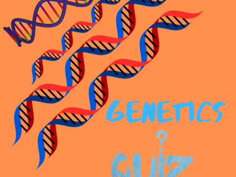 Genetics Engineering Quiz 1